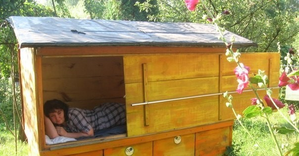 Sleep on the Beehives with Bees.jpg